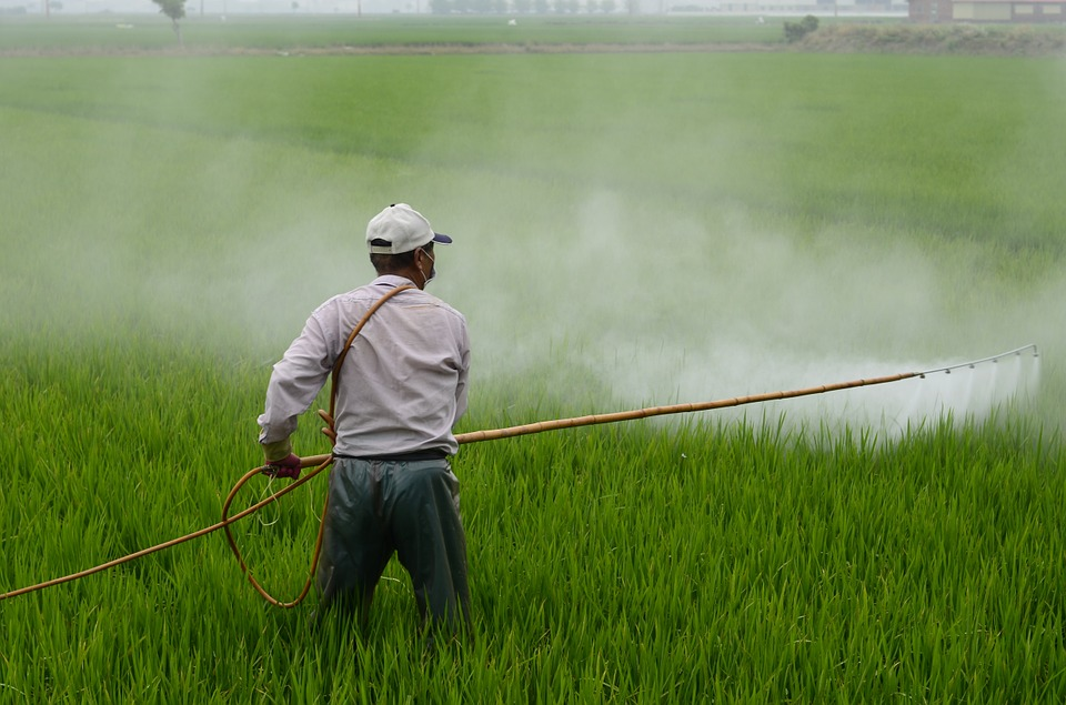 Mighty yet perilous: Why are pesticides ignored in global health debates?